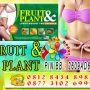 Obat Diet, Nutrisi dan Suplemen Pelangsing Herbal Penurun Berat Badan Medan, Palembang, Kudus