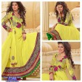 anarkali best embroiderry 28
