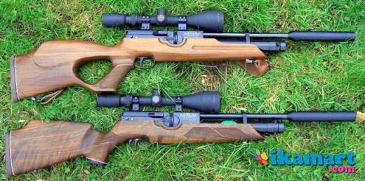 Www.senapan Angin Pcp Senapan Angin Pcp Hw100
