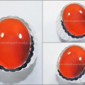 HOT Red RAFLESIA Bengkulu, Kristal Mulus - RLS 029