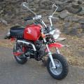 Honda Mongkay 110cc