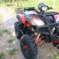ATV Nuro Ring 8 110cc