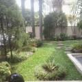 tukang taman, rumput gajah mini dan rumput jepang
