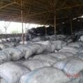 Arang Batok ( Karbon Aktif )