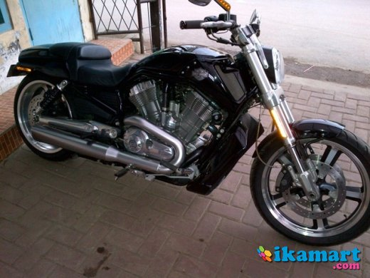 Jual Harley Davidson V Rod Bekas