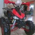 Motor ATV 110cc Ring 8 Ready