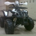 Motor ATV 110cc Ring 8