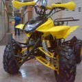 Motor ATV Ring 8 110cc