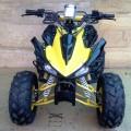 New ATV Raptor Ring 8 110cc