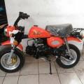 New Honda Mongkay Orange 110cc