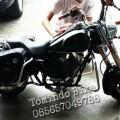 Mini Harley Davidson