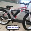 Sepeda Listrik Selis Type Fat Bike
