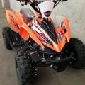 New ATV Quad Bike 50cc
