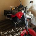 Motor Mini Harley Davidson