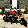 Motor Mini Reflika Honda Monkey 110cc