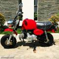 Motor Mini Reflika Honda Gorilla 110cc