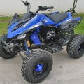 MOTOR ATV 150cc Predator RS Sport