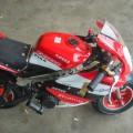 New Mini GP 50 cc