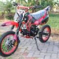 New Mini Trail 110cc
