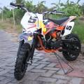 New Mini Trail 50cc