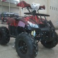 Kendaraan Motor ATv 110cc Type Inka