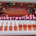 Biocell Collagen Platinum Forte + Vit C