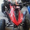 New Mini ATV Quad Bike 50cc