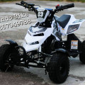 New ATV Mini 50cc