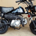 New Reflika Honda Mongkay 110cc