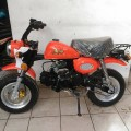 Honda Mongkay Orange 110cc