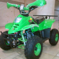 Motor Atv 110cc Type Quin Sport Ring 8