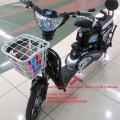 Electric Bike Super Rider Earth Platinum
