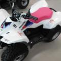 SUZUKI LT-Z50 QUADSPORT 50CC L0 ATV