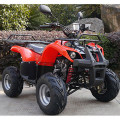 Anak-anak ATV , 110cc