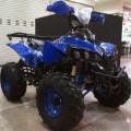 mini motor Atv 50cc