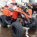Atv Can-Am DS 90