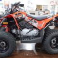 Motor Atv Can-Am DS 90