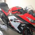 Kawasaki Ninja 250 Fi Abs Edisi
