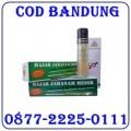 Jual Hajar jahanam Obat Kuat Oles 087722250111 Bandung COD