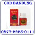 Jual Minyak Lintah Papua Oil pembesar Penis 087722250111 Bandung COD