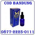 Jual Obat Perangsang Wanita Blue wizard 087722250111 Bandung COD