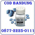 Jual Obat Viagra Usa Obat Kuat Bandung COD 087722250111