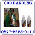 Jual Obat Perangsang Wanita Potenzol 087722250111 Bandung COD