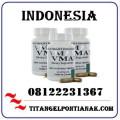 Jual Obat Vimax Di Pontianak { Bisa Cod } 08122231367