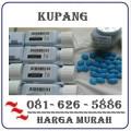 Agen Resmi Jual Obat Viagra Di Kupang 082121380048