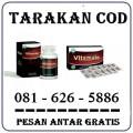Apotik Jual Obat Vitamale Di Tarakan Asli 0816265886
