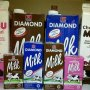 Distributor All product Fiamond Cold Storage (Jungle Jus, Coklat pasta, Freshmilk, Mayyonnaise, Ice cream)