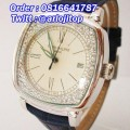 AIGNER Bary A37500 Leather (GLBR)